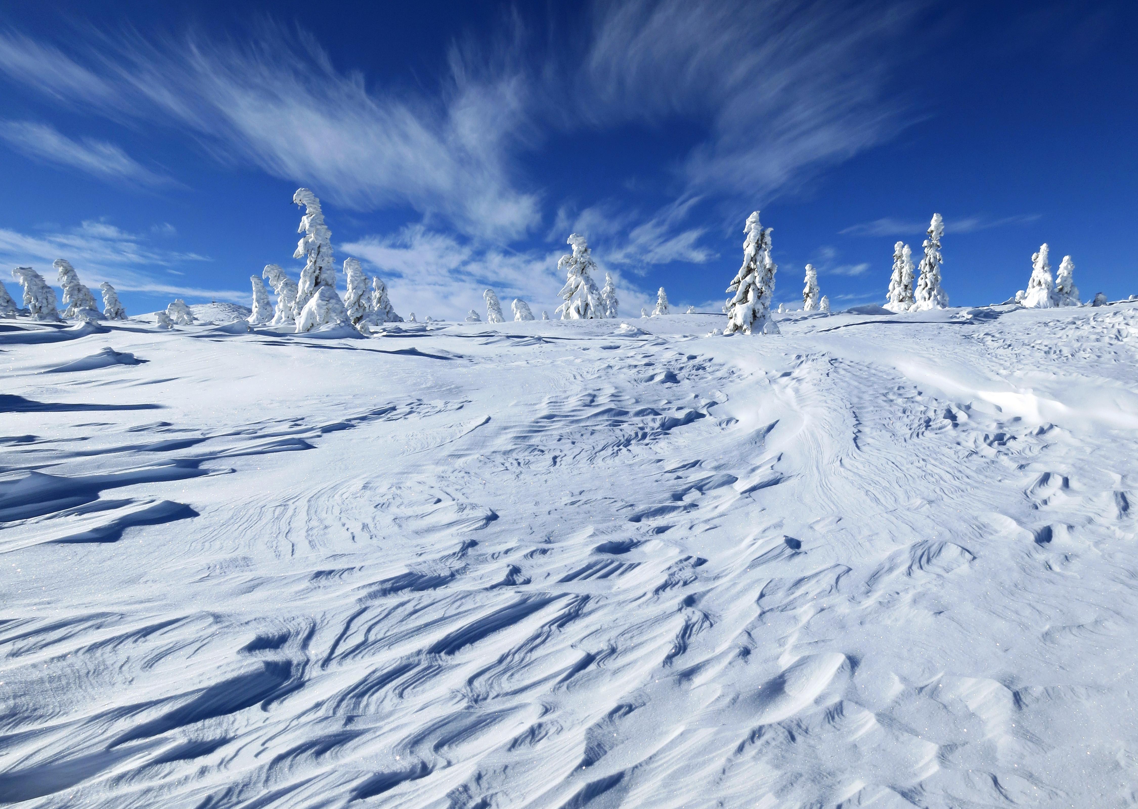 безоблачное небо зимой  № 2469733 бесплатно