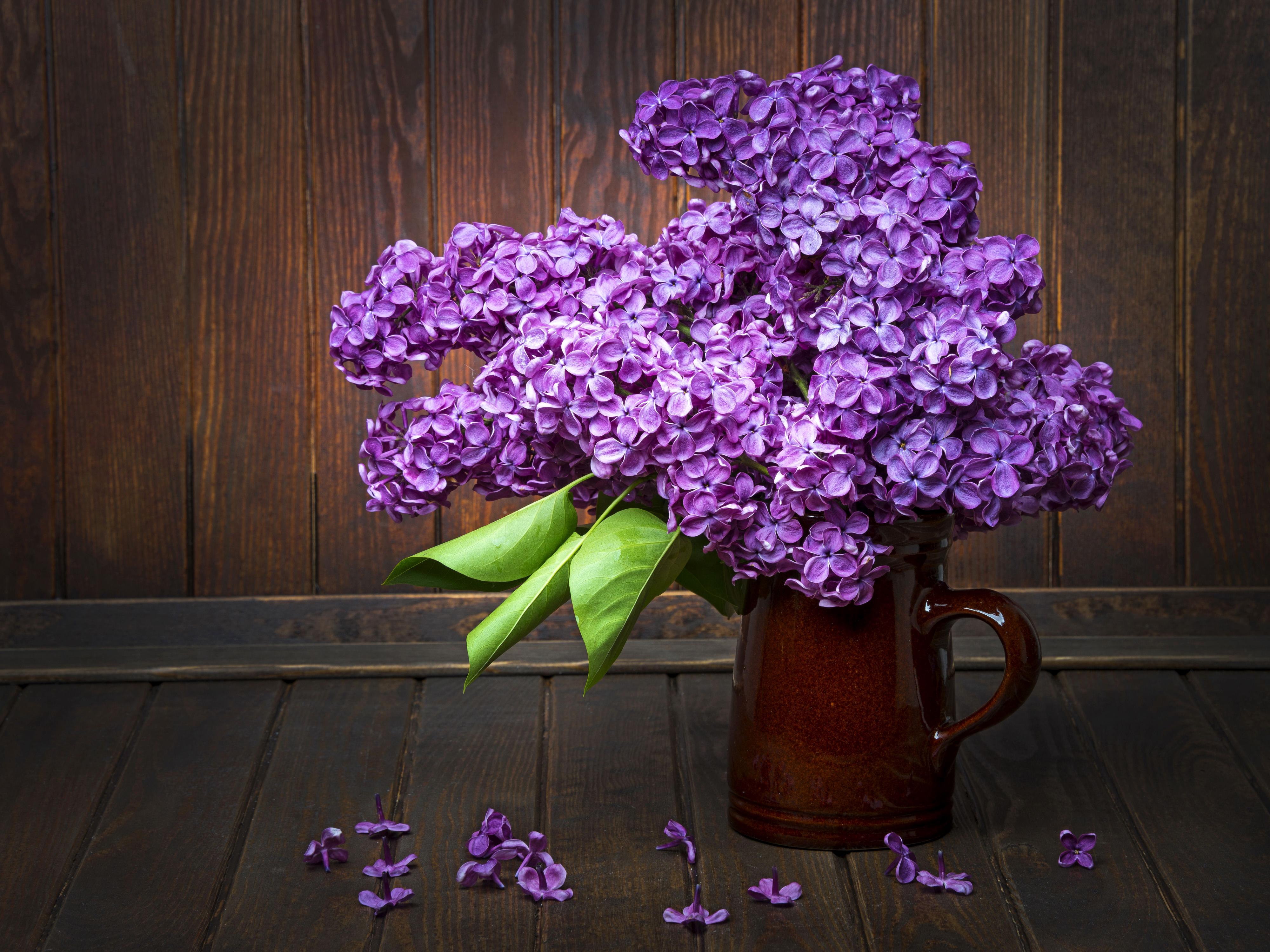 природа цветы ваза сирень  № 3063891  скачать