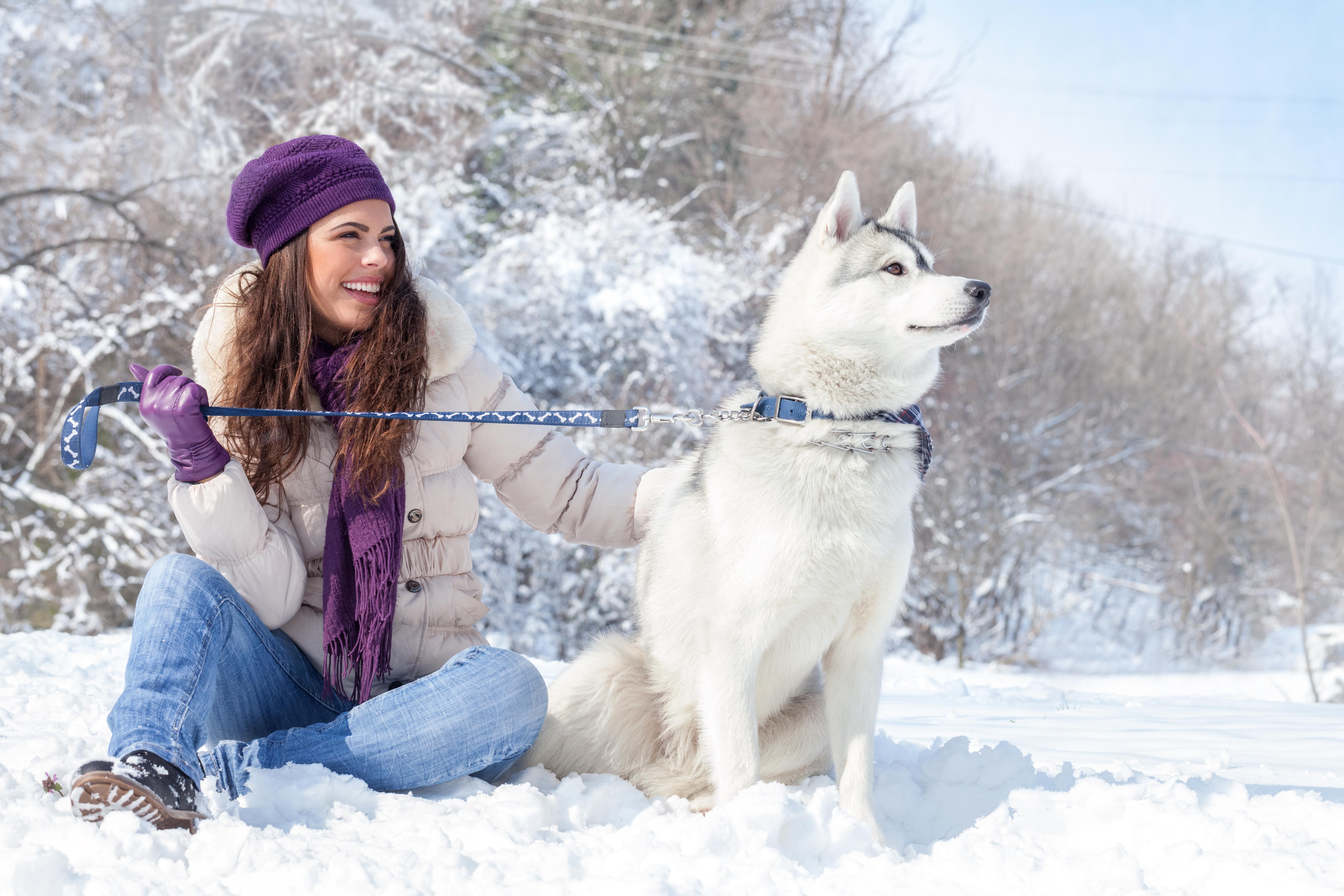 девушка брюнетка зима снег winter snow  № 2816662 загрузить