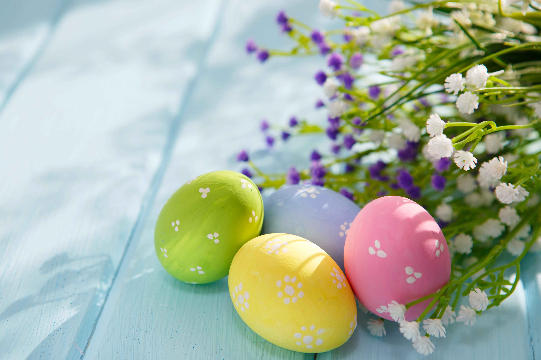 пасхальные яйца  № 1677953 бесплатно