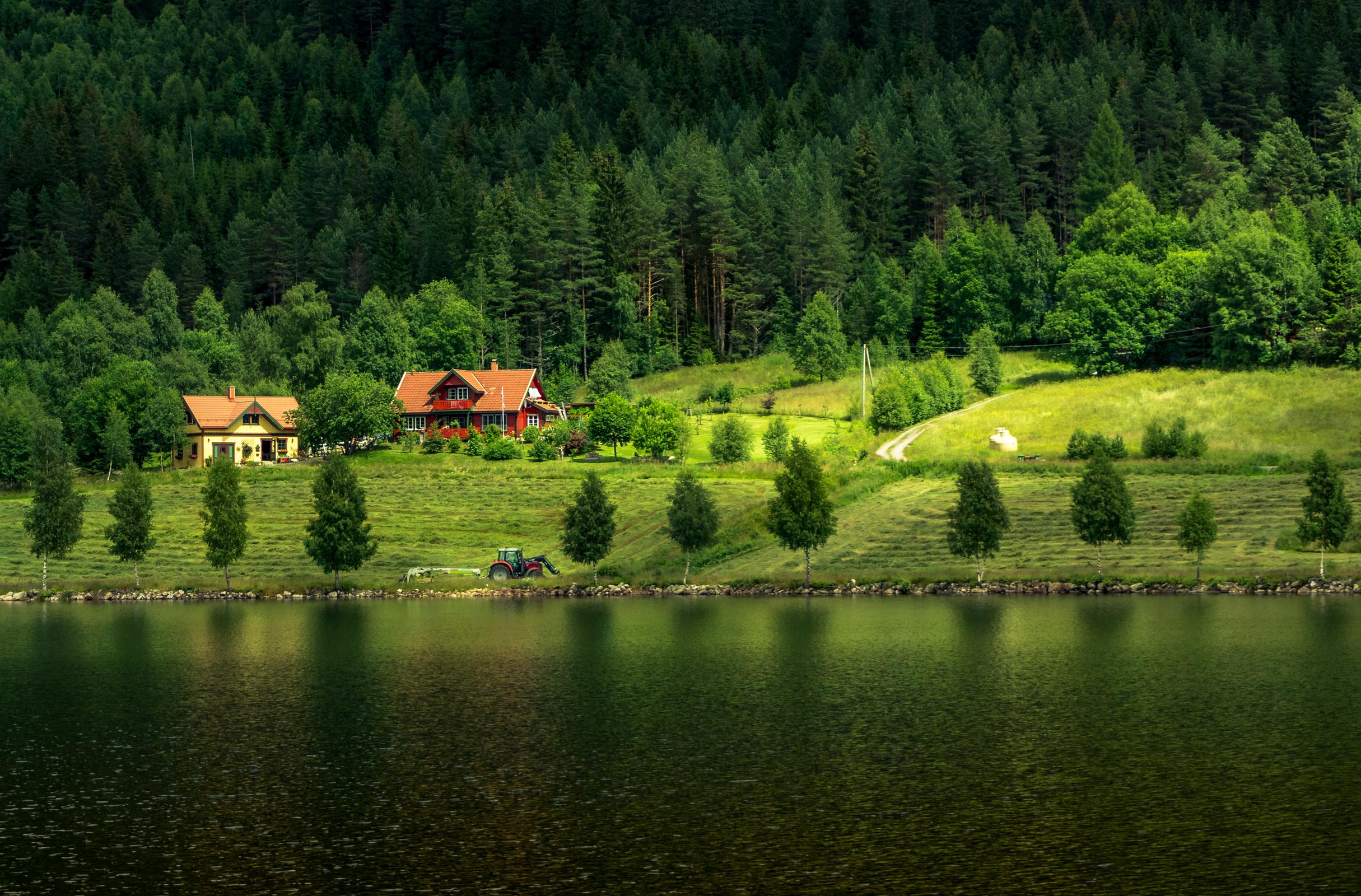 природа деревья небо река дома  № 571527  скачать