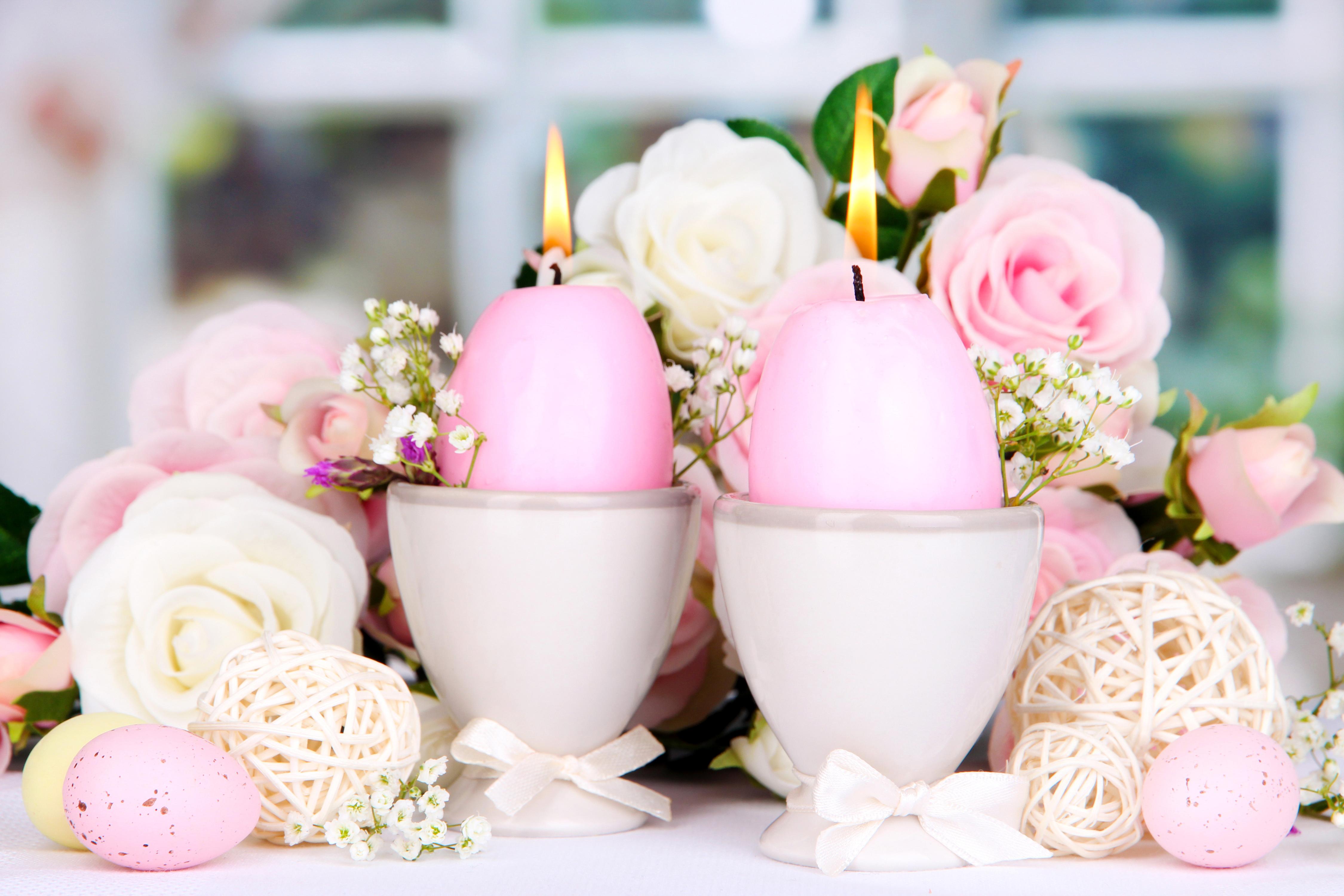 цветы свечи  № 1504366  скачать