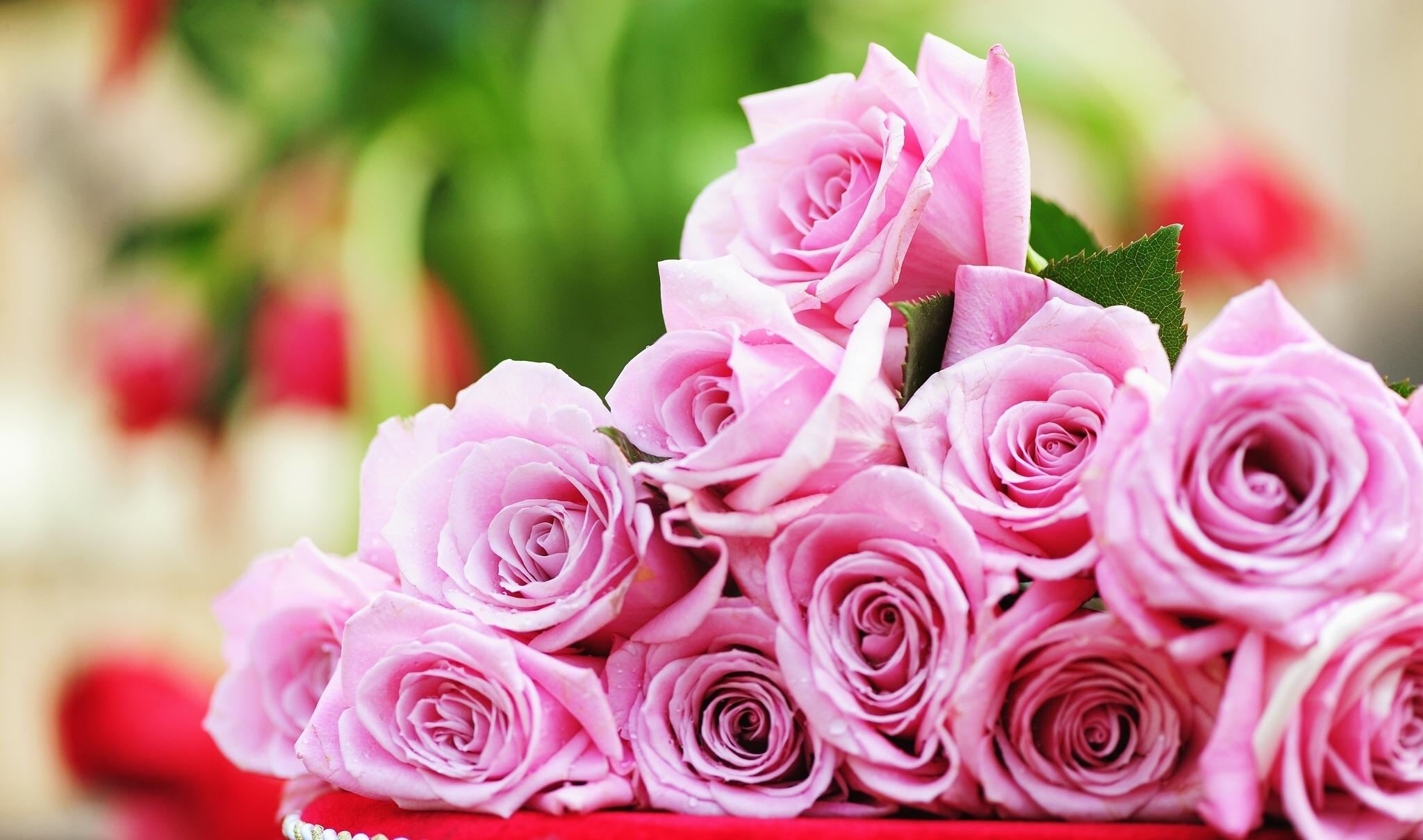 букет роз обои на рабочий стол в высоком качестве № 178073  скачать