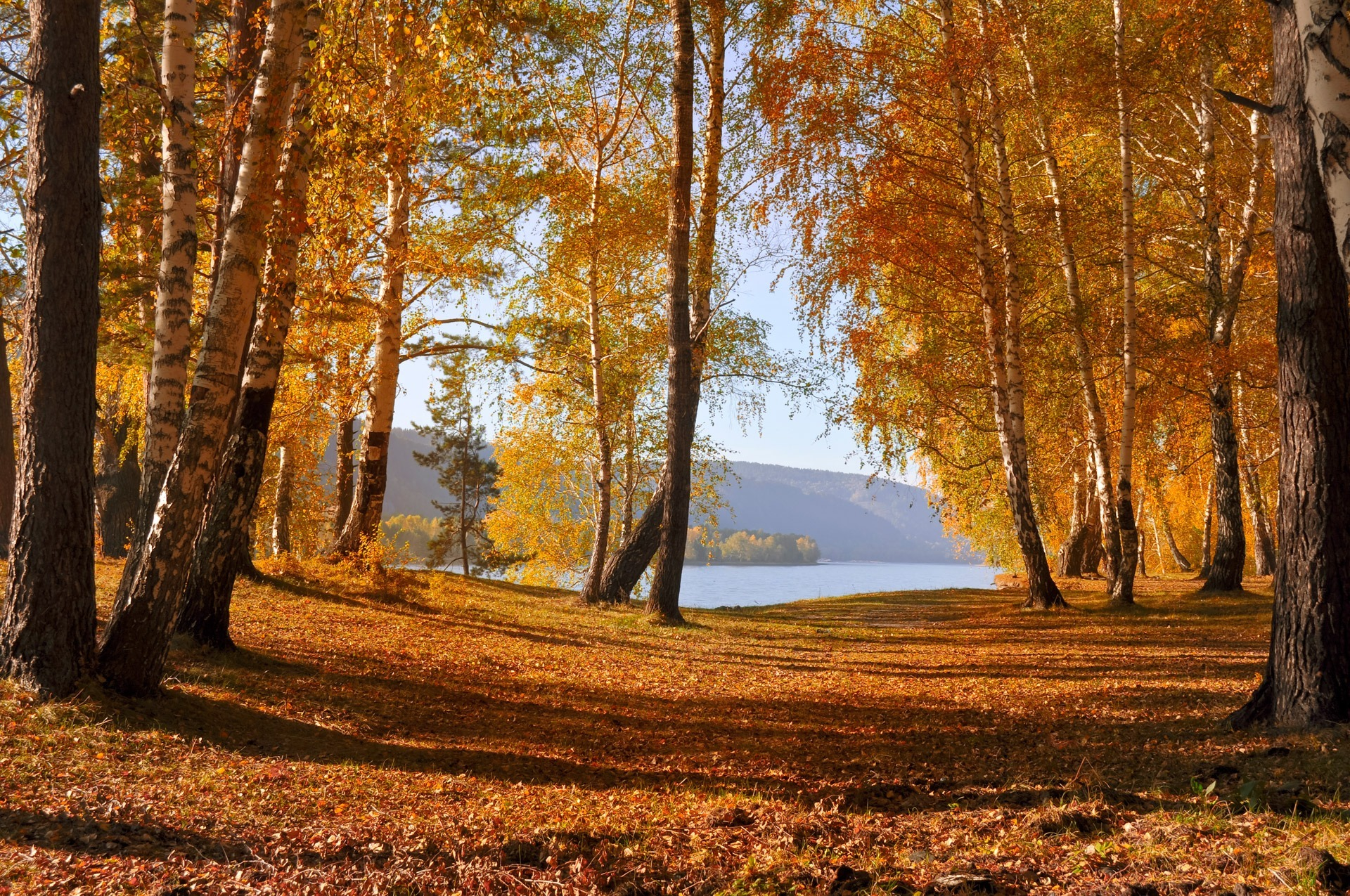 обои на рабочий стол осень природа река озеро лес № 241671 загрузить