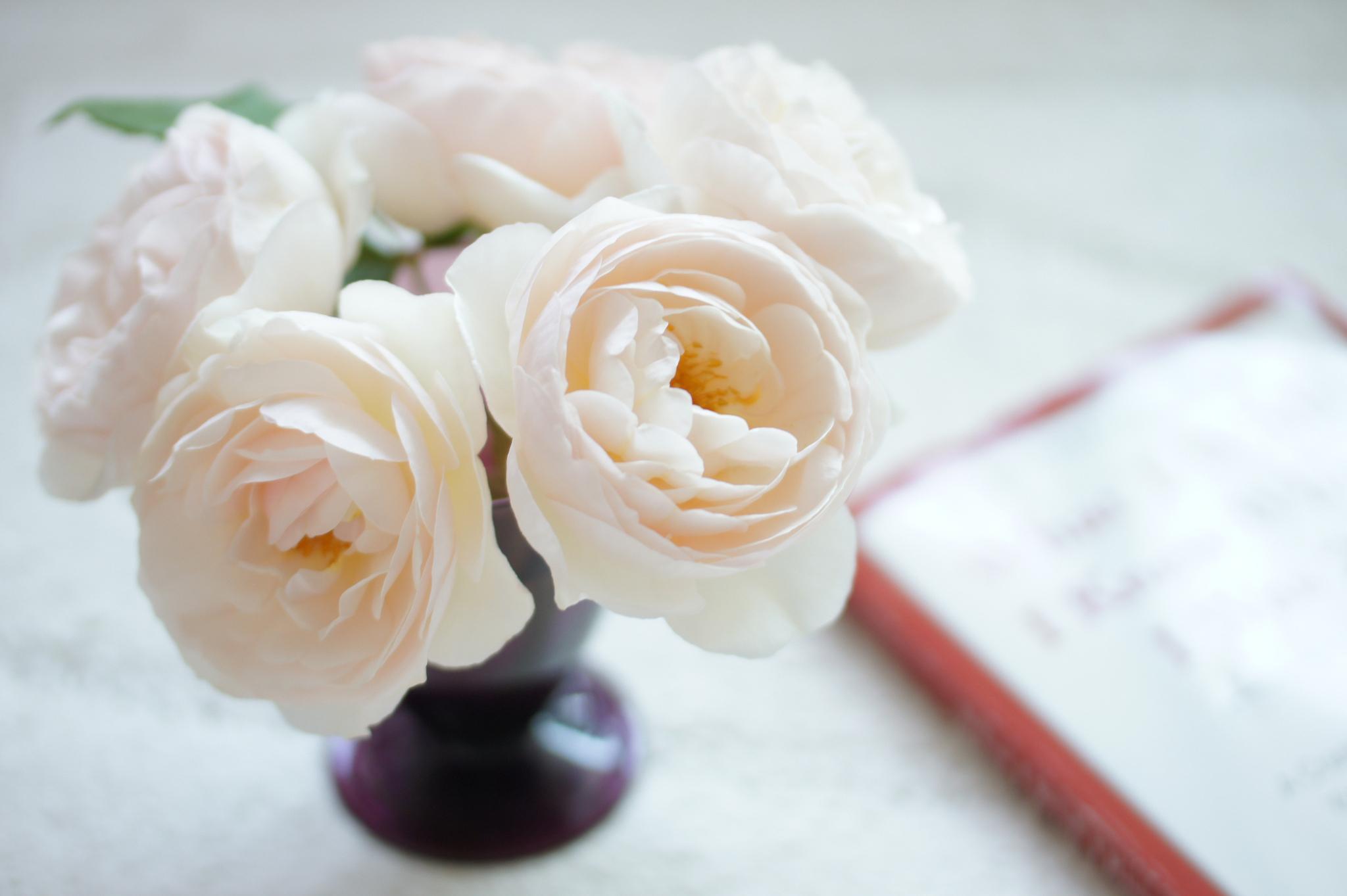 нежно-кремовые свадебные розы  № 1322987 бесплатно