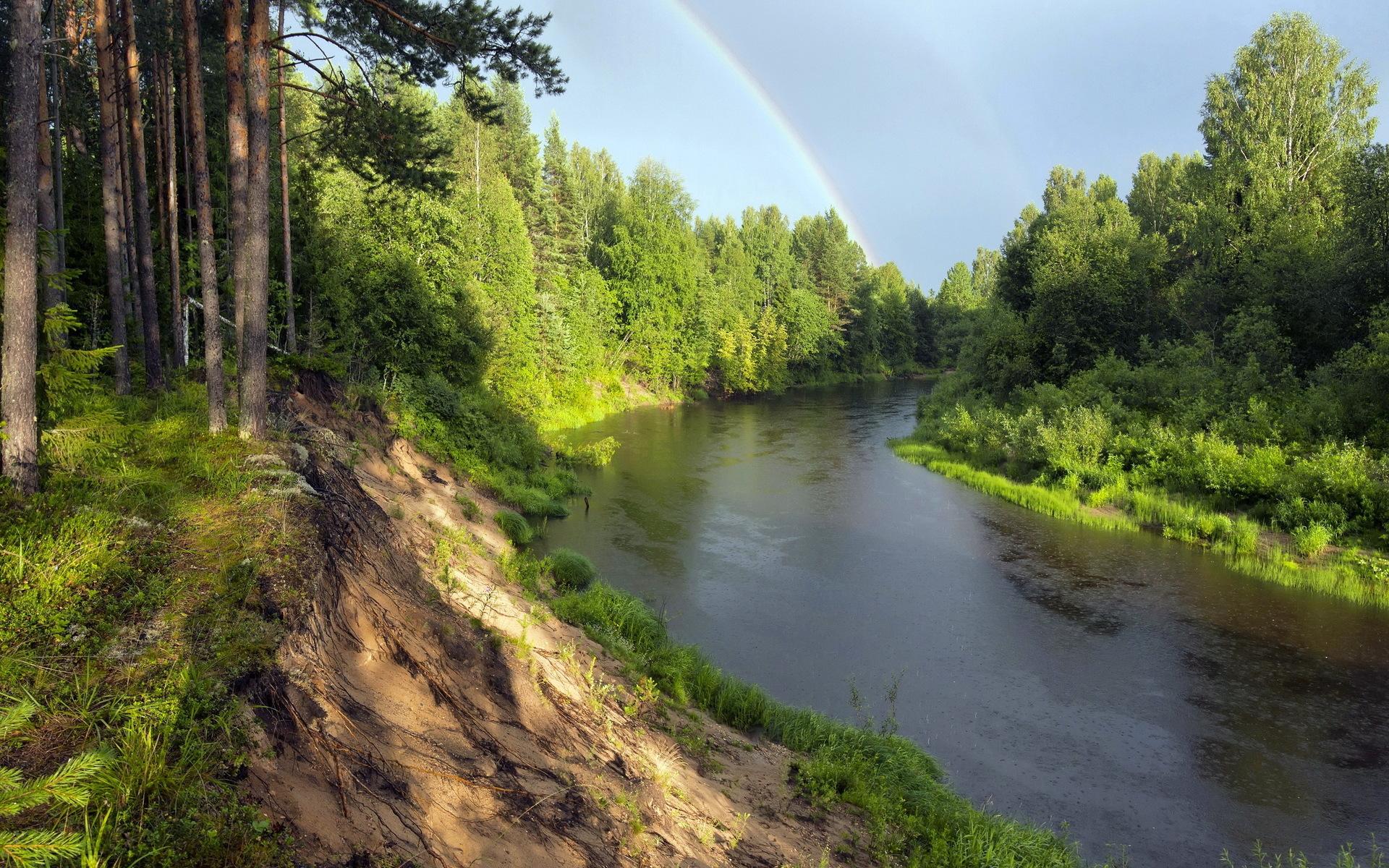 река лес  № 2789152 бесплатно