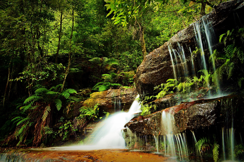 водопад среди деревьев  № 373543  скачать