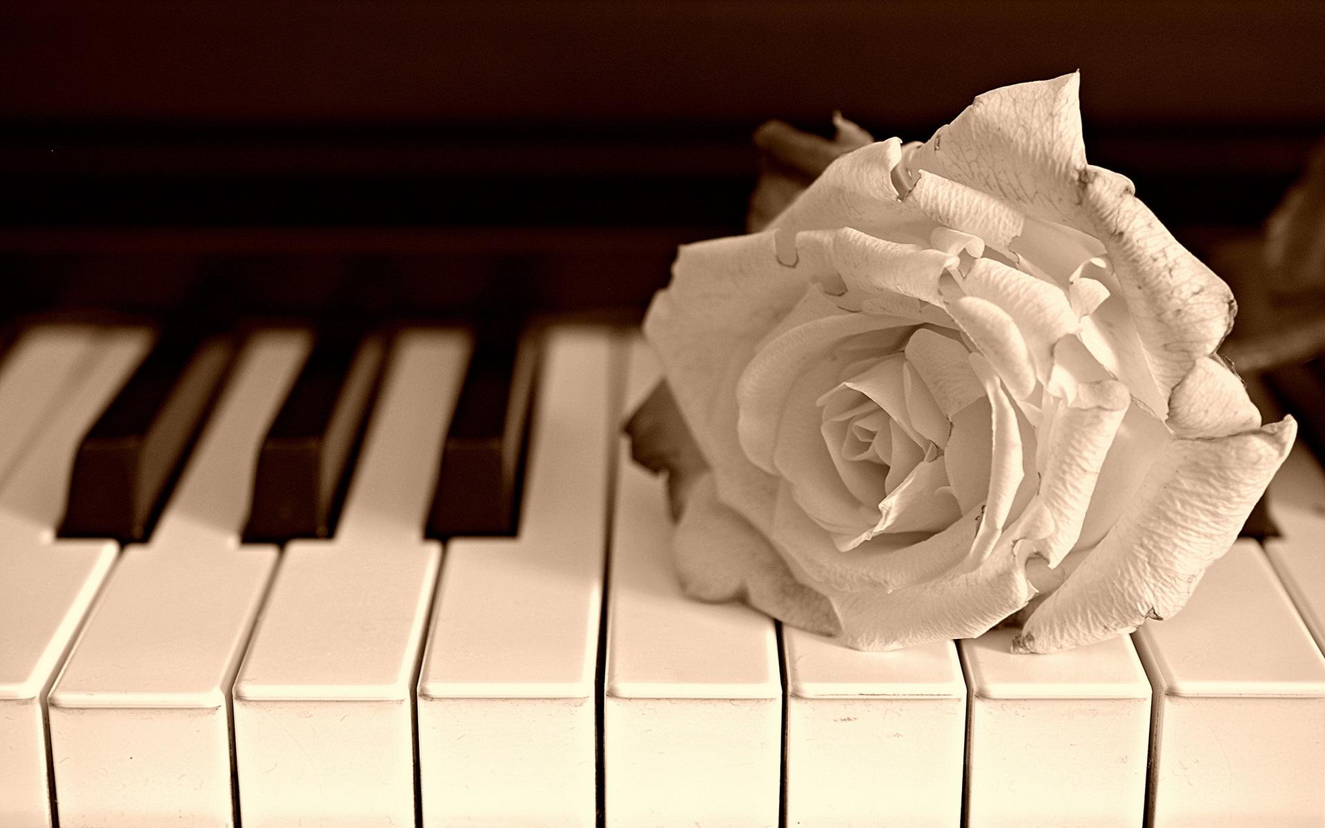 Пианино  № 1529679  скачать