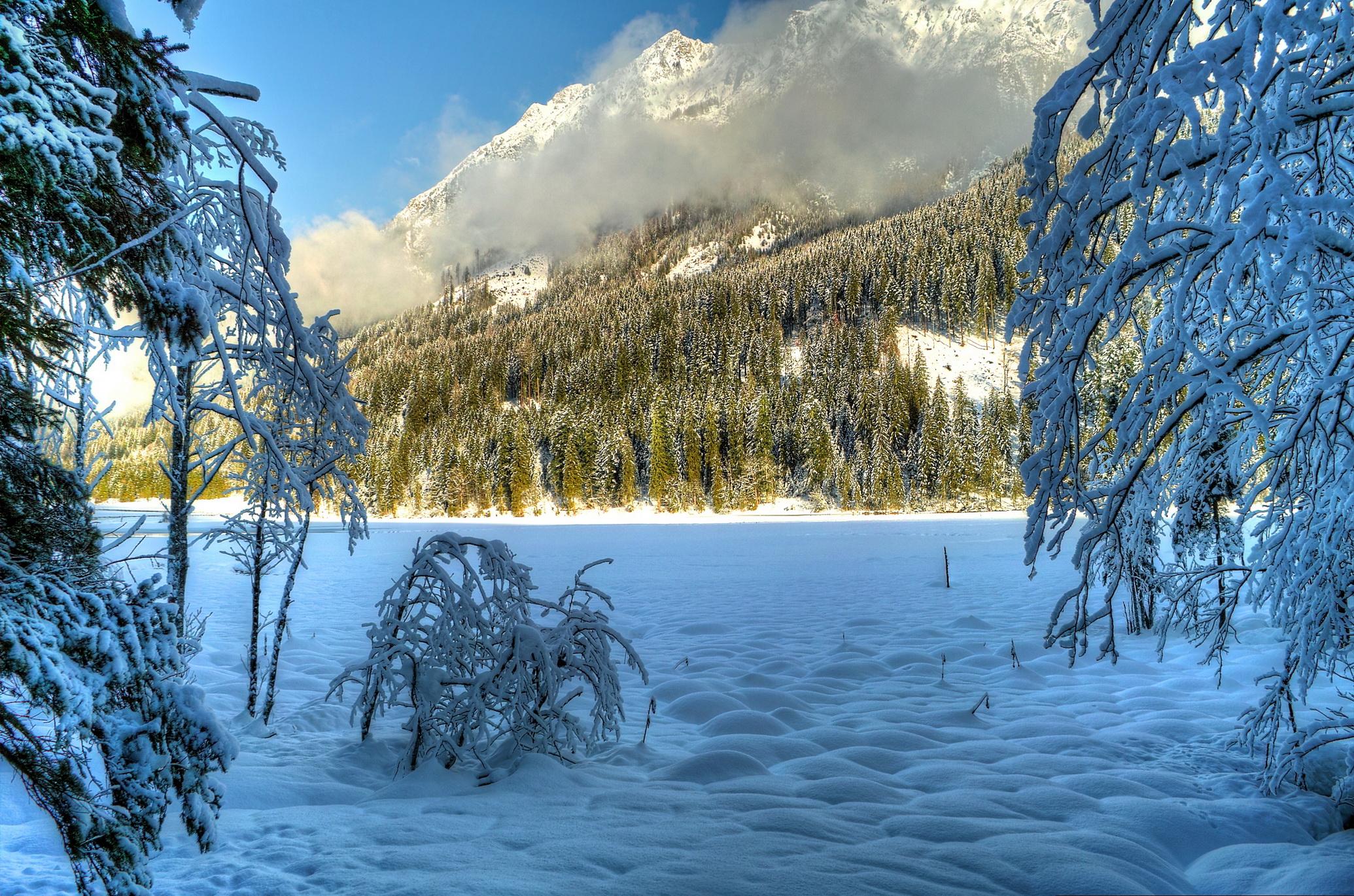 природа скалы деревья горы снег зима nature rock trees mountains snow winter  № 455844 бесплатно