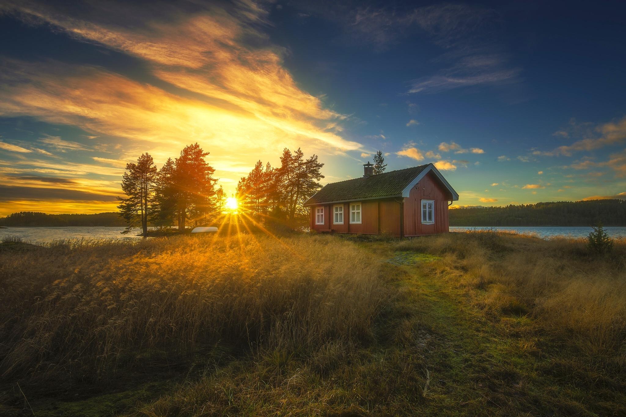 Восход солнца на окраине леса  № 1409544 бесплатно