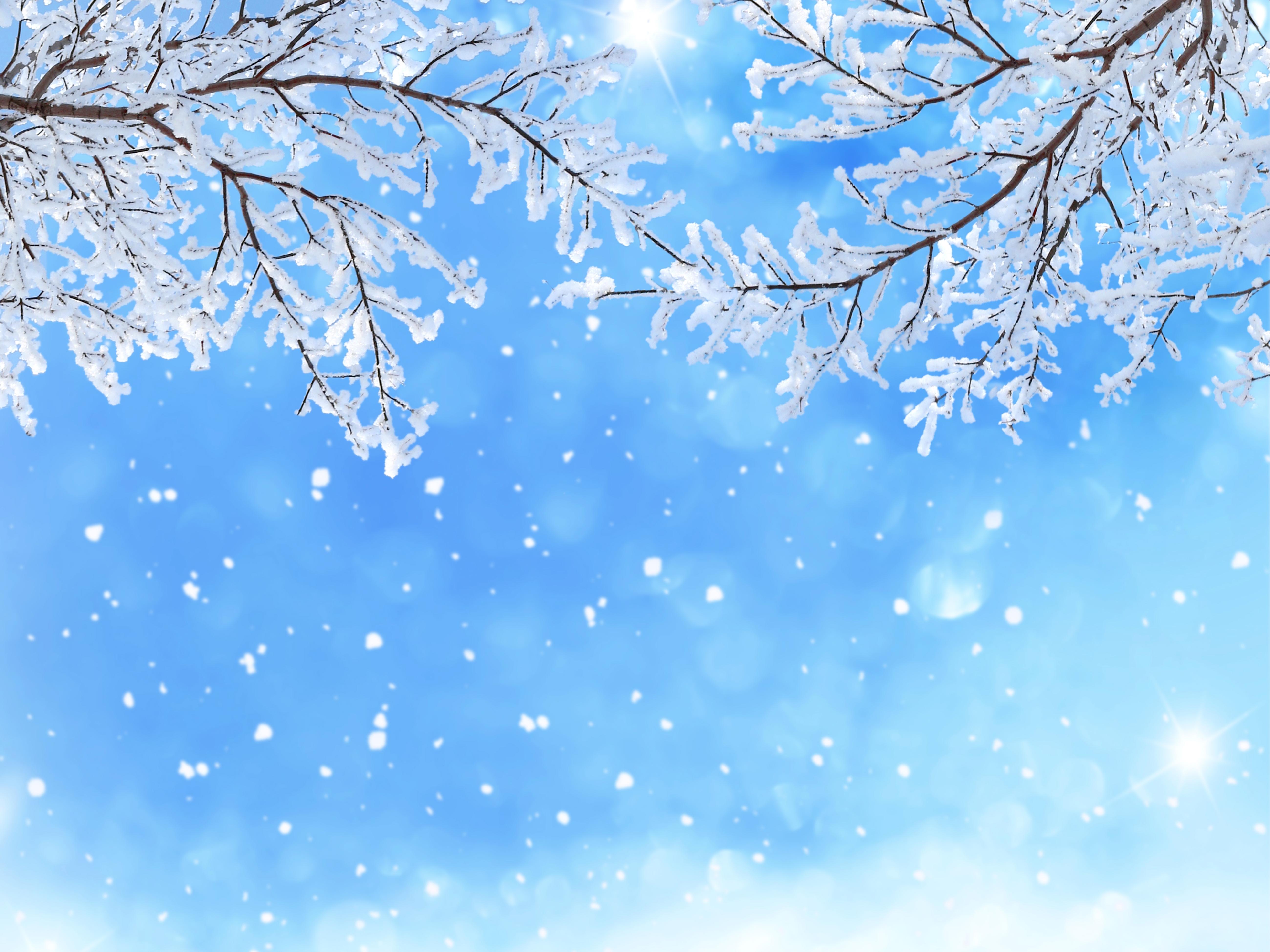 безоблачное небо зимой  № 2469657 без смс