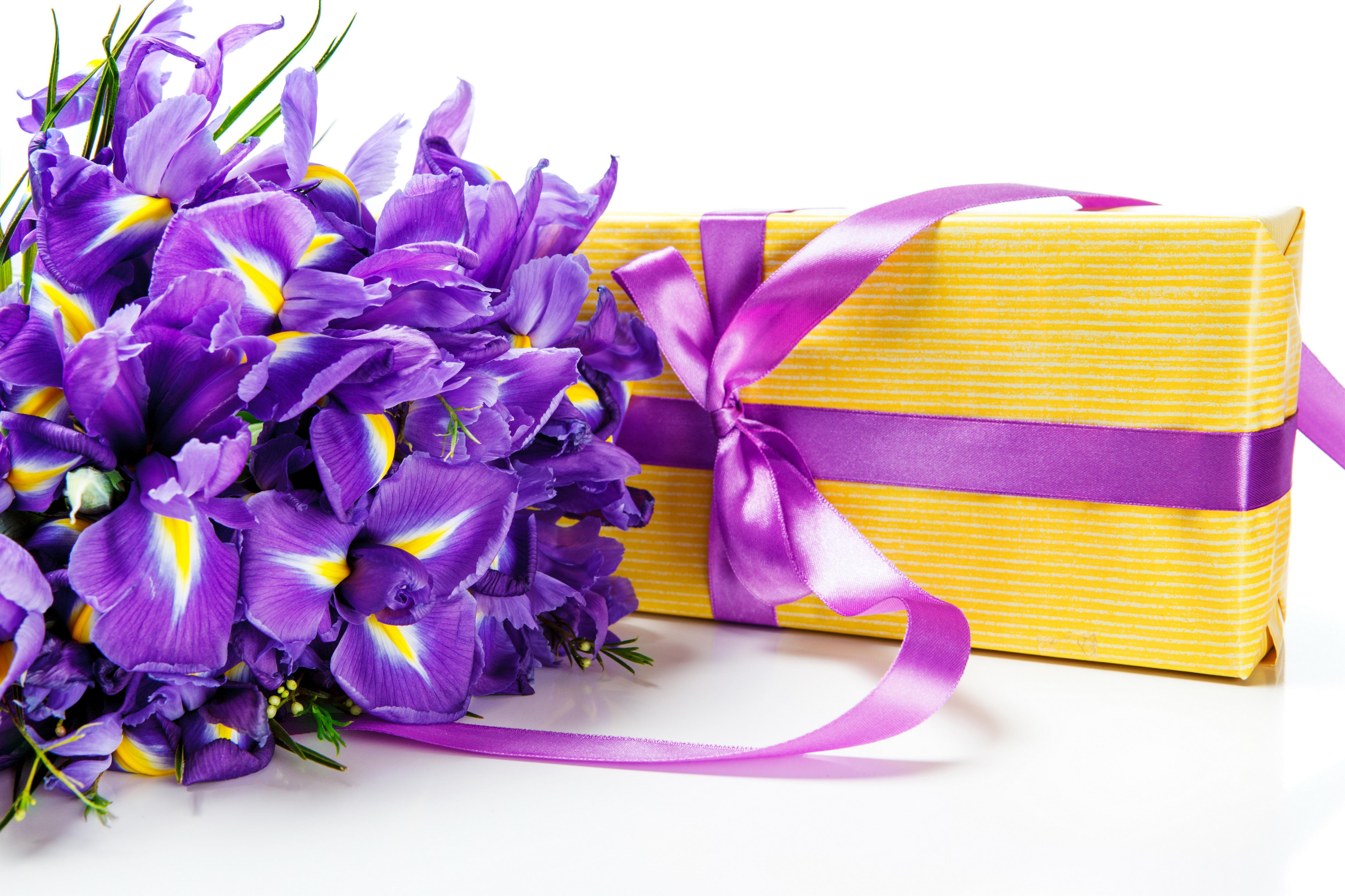 фиолетовые цветы в коробке  № 2541517 бесплатно