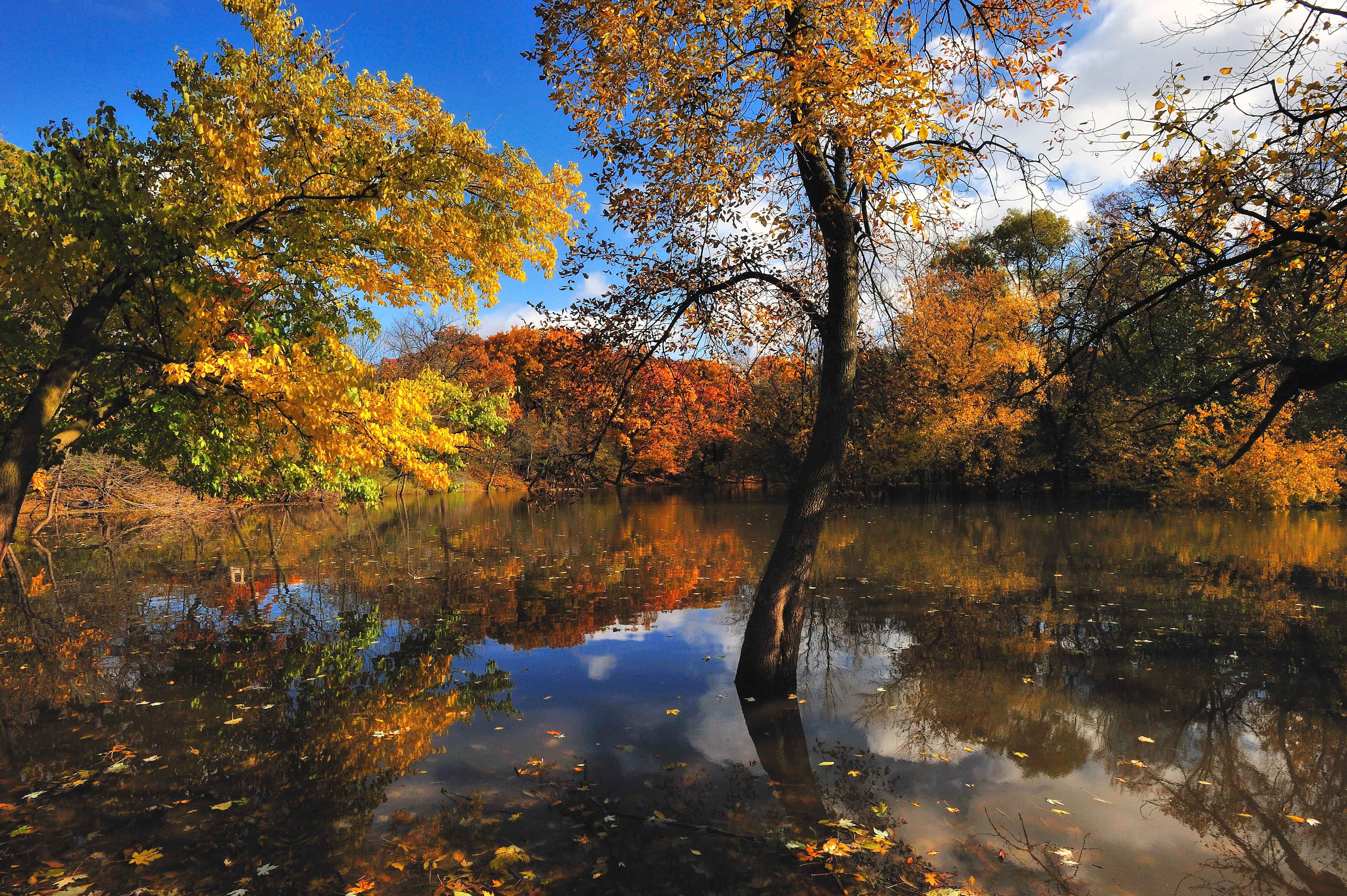 Осень и вода обои на рабочий стол