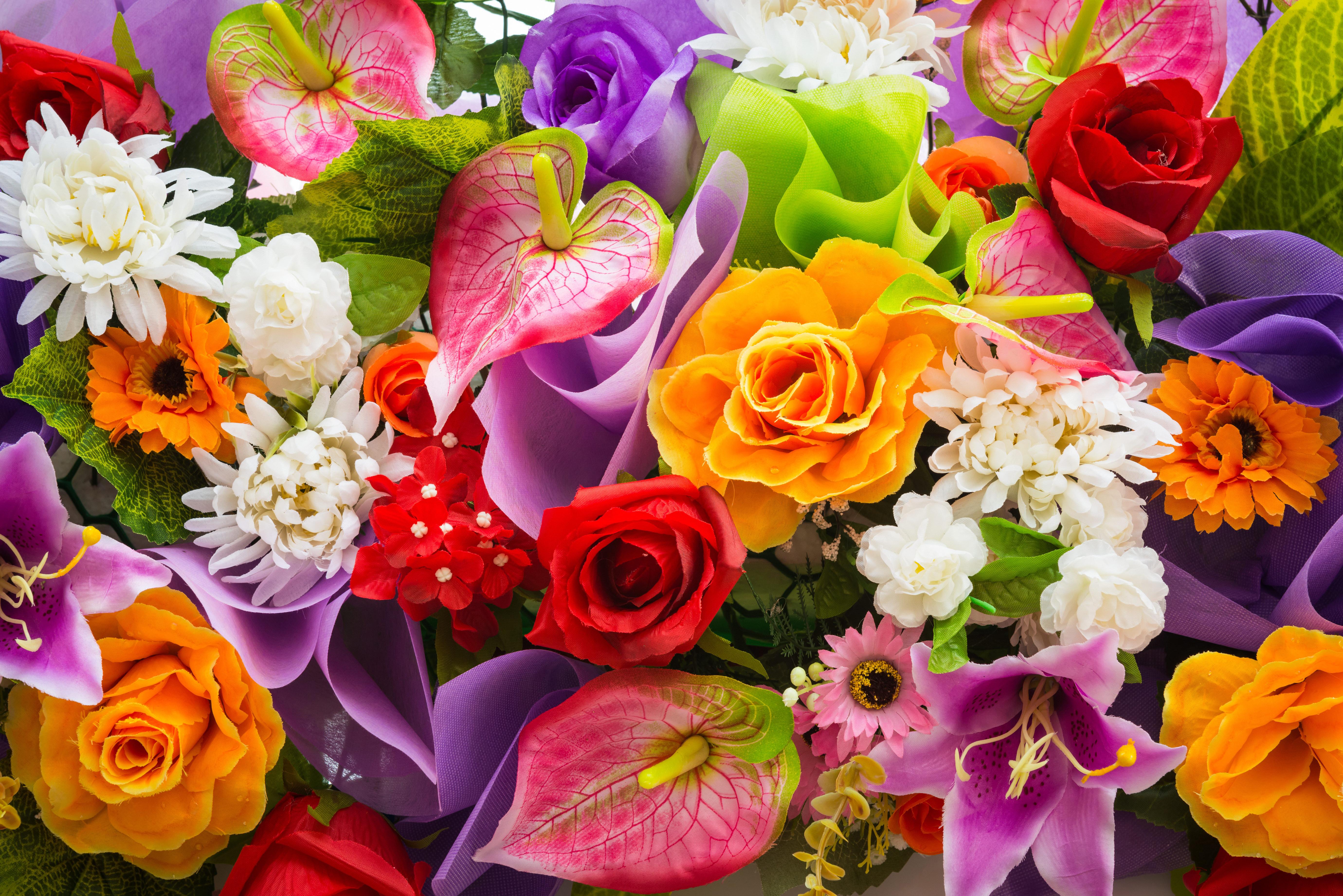 картинки для рабочего стола лилии:
