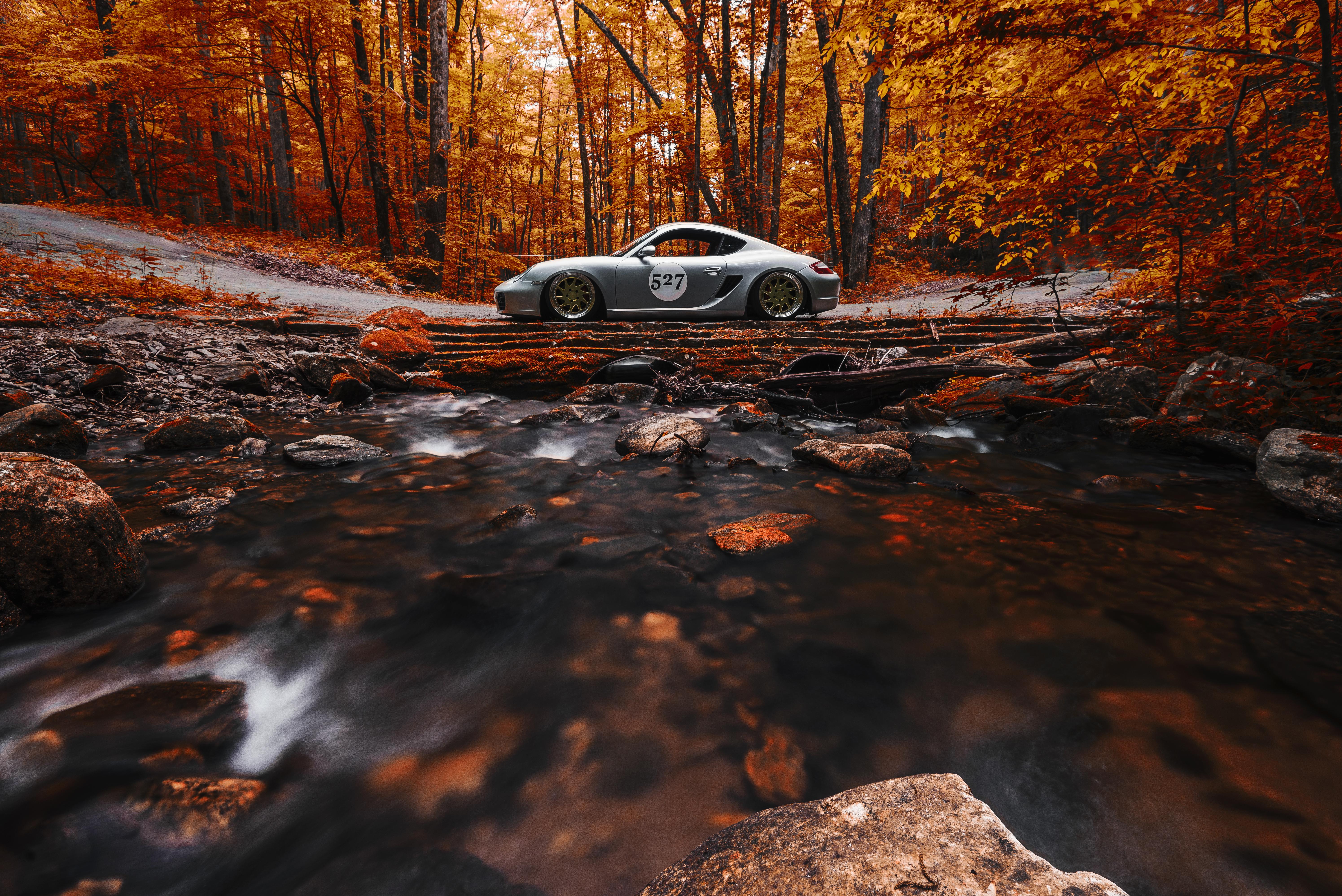 автомобиль осень лес дорога  № 3771476 загрузить