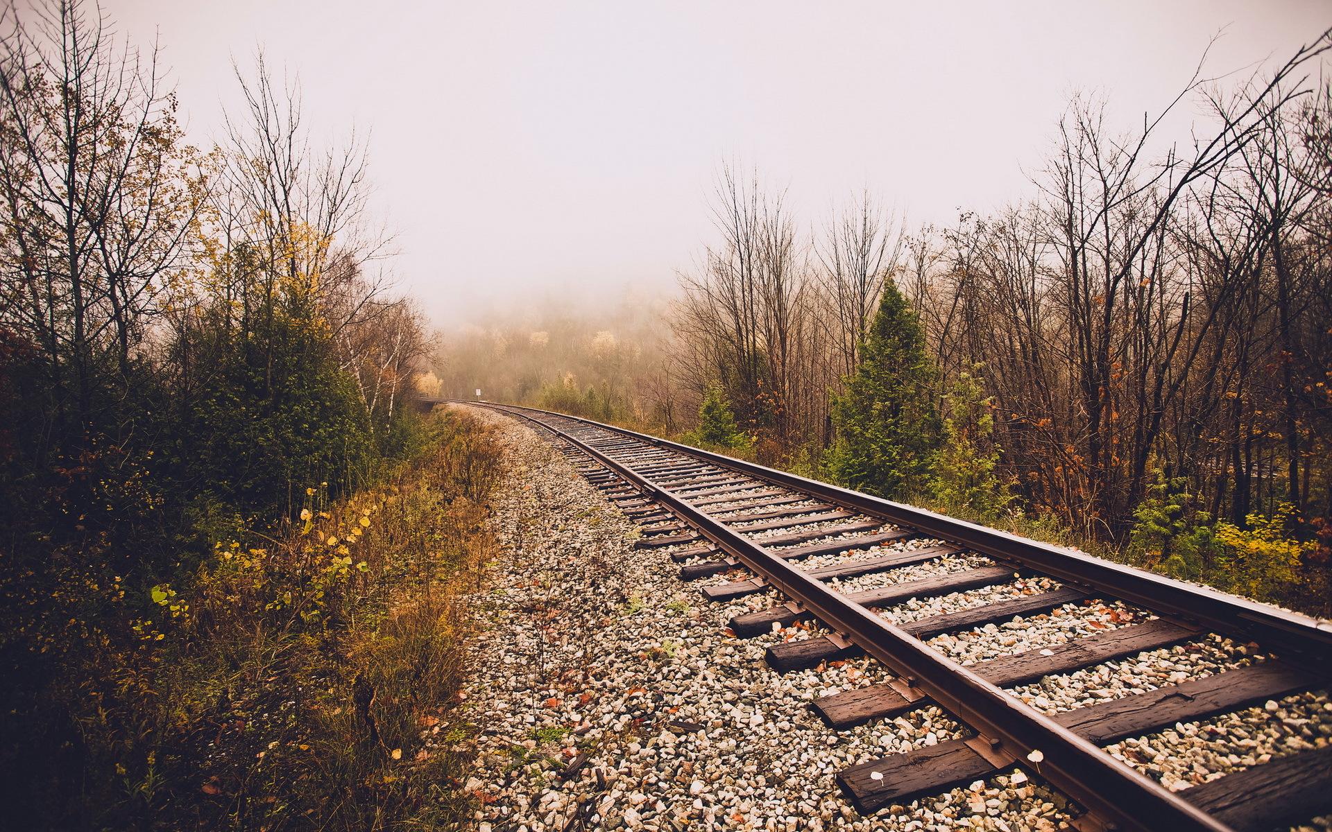 рельсы железная дорога деревья туннель  № 3118436 загрузить
