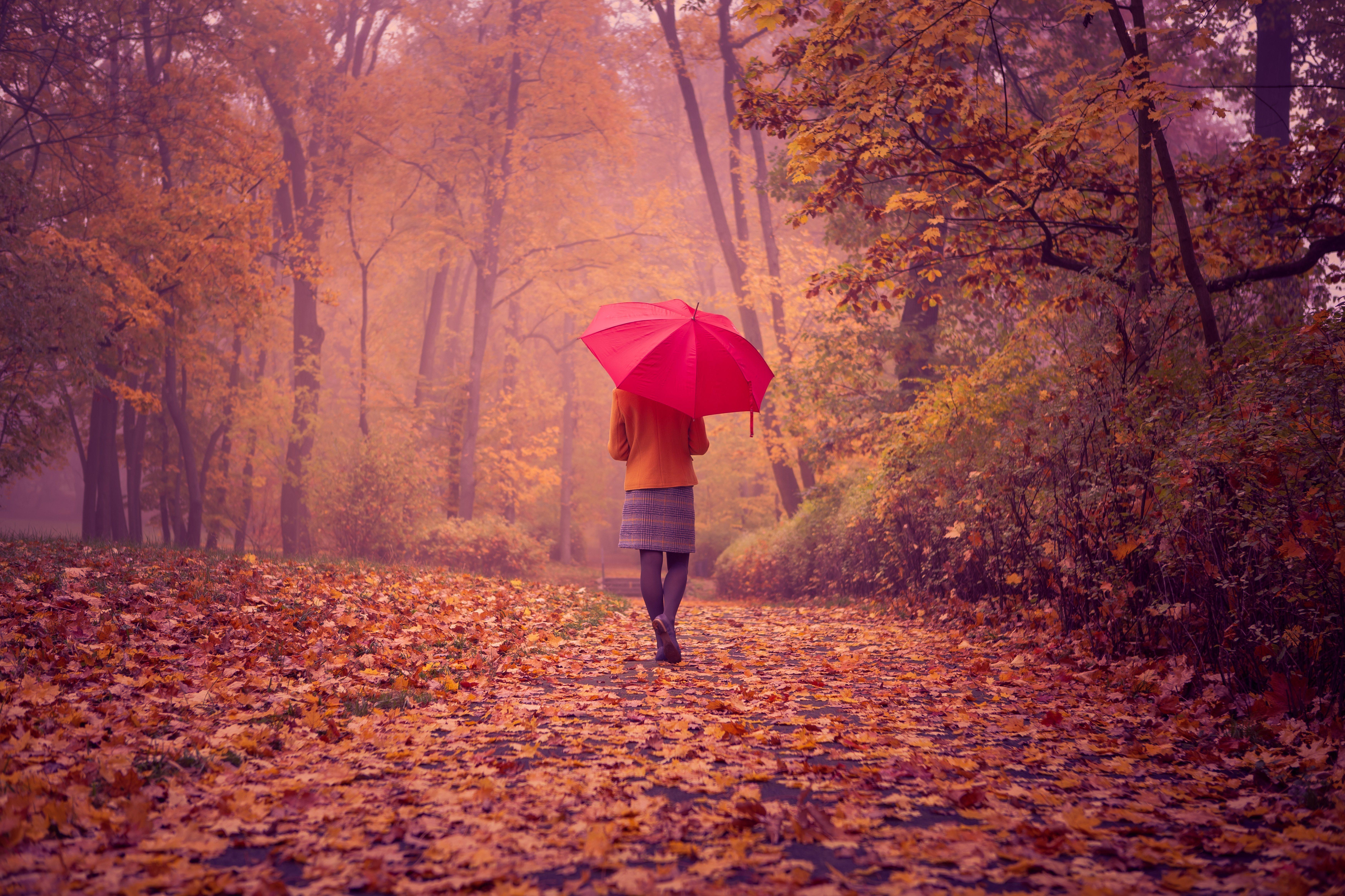 девушка зонт дождь природа  № 3582347  скачать