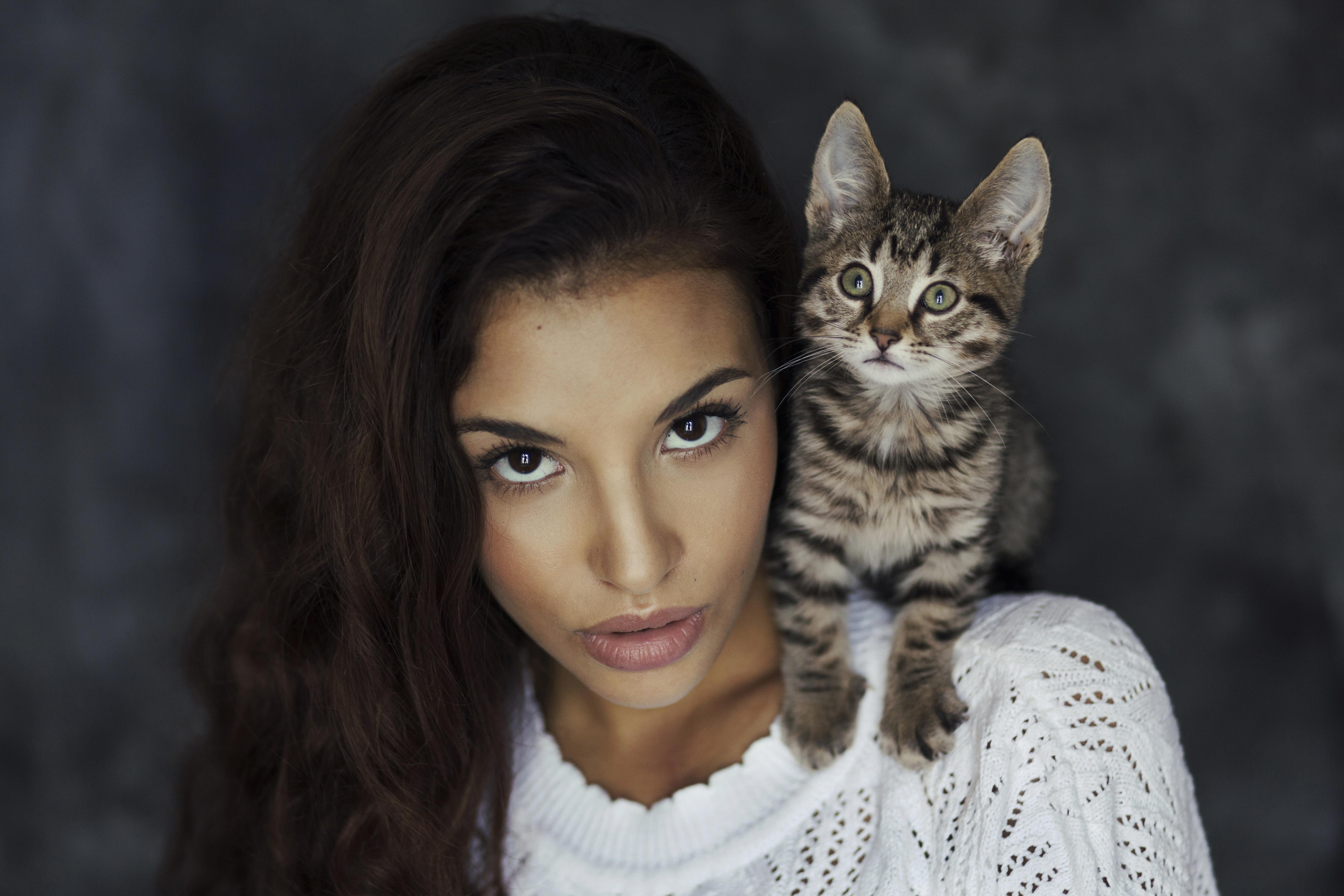 девушка котенок лицо взгляд  № 3597555  скачать