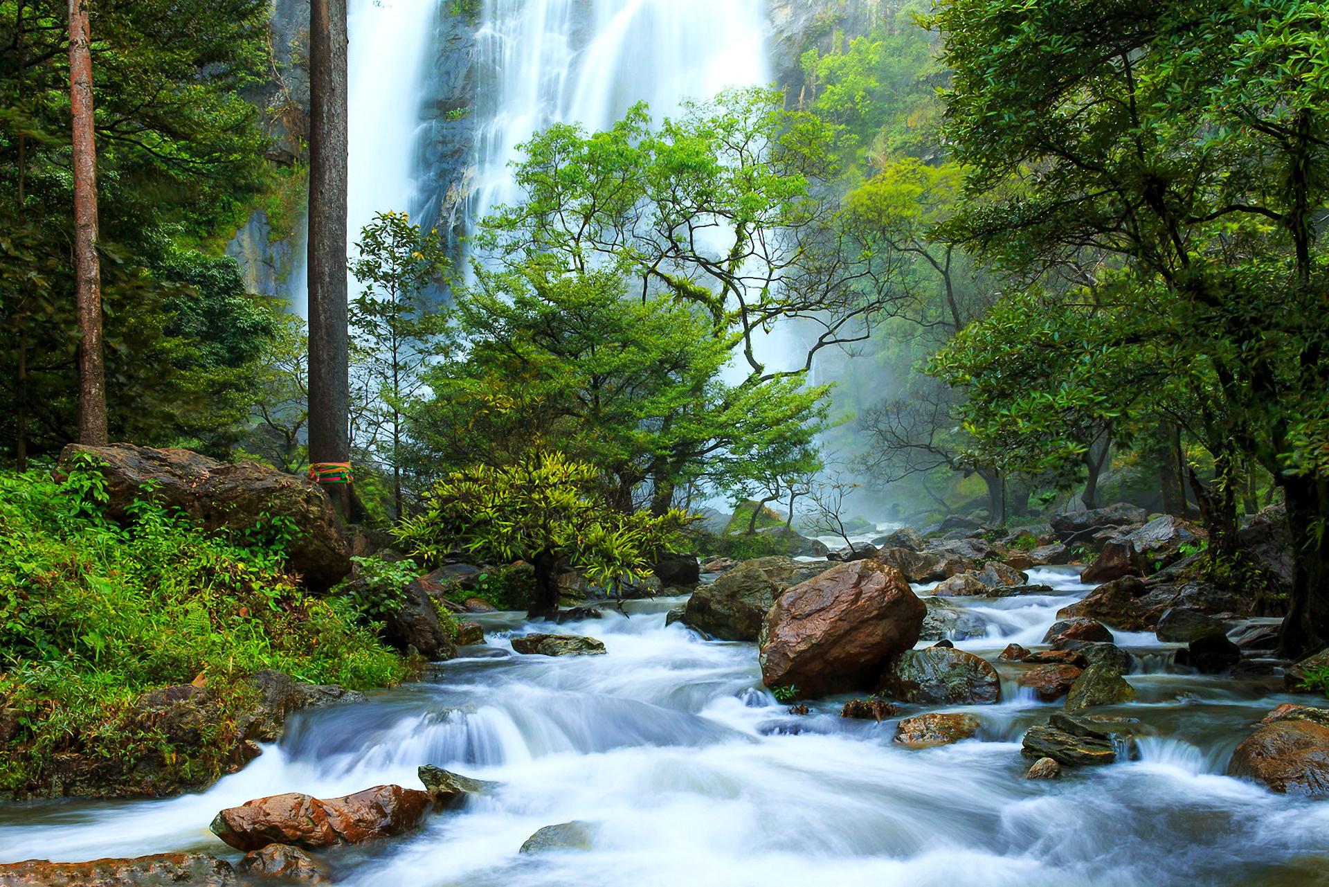 природа река водопад деревья  № 2490169  скачать