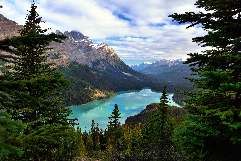 природа деревья озеро горы скалы nature trees the lake mountains rock  № 400460 бесплатно
