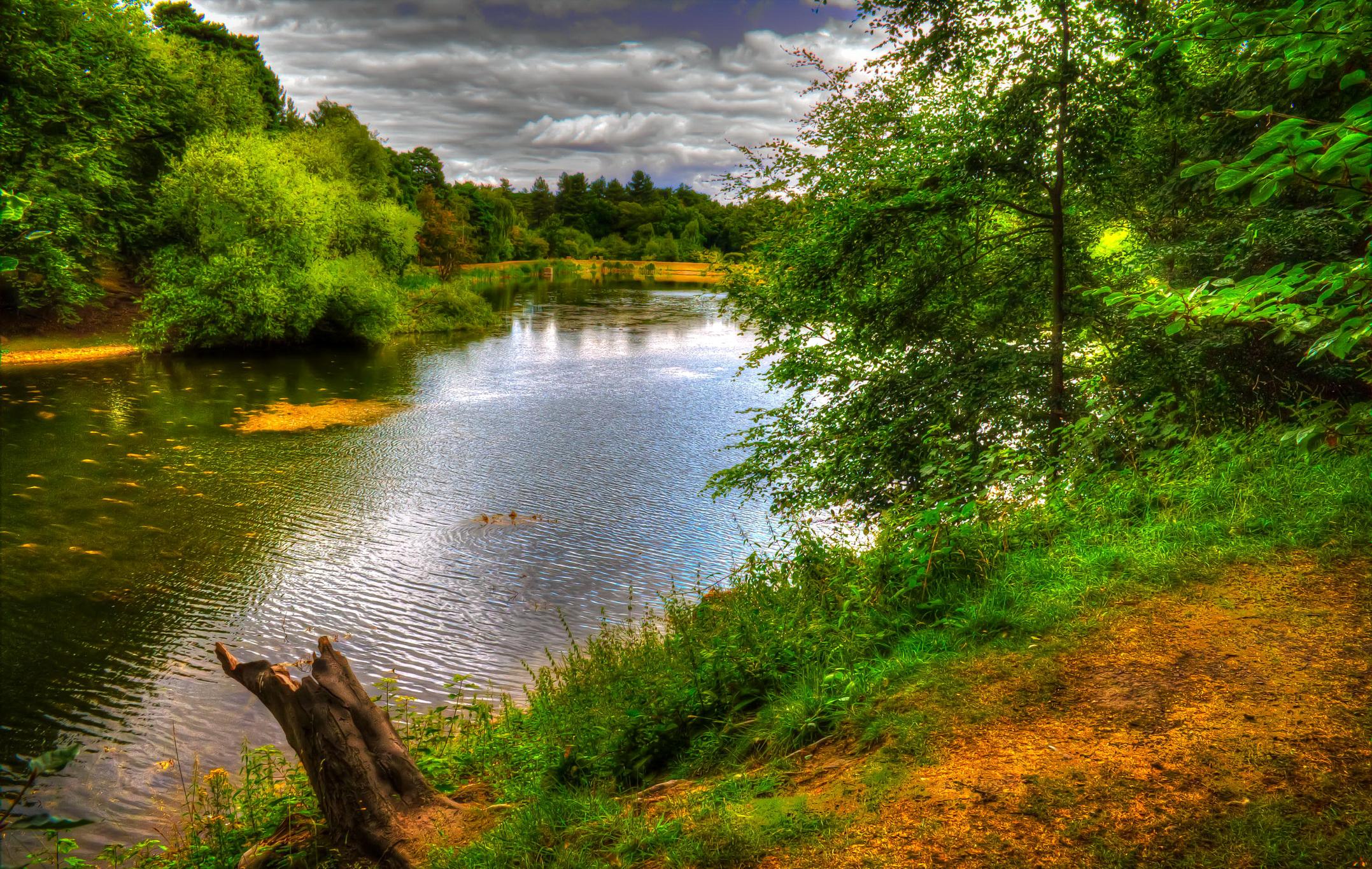 природа HDR река деревья  № 257288 бесплатно