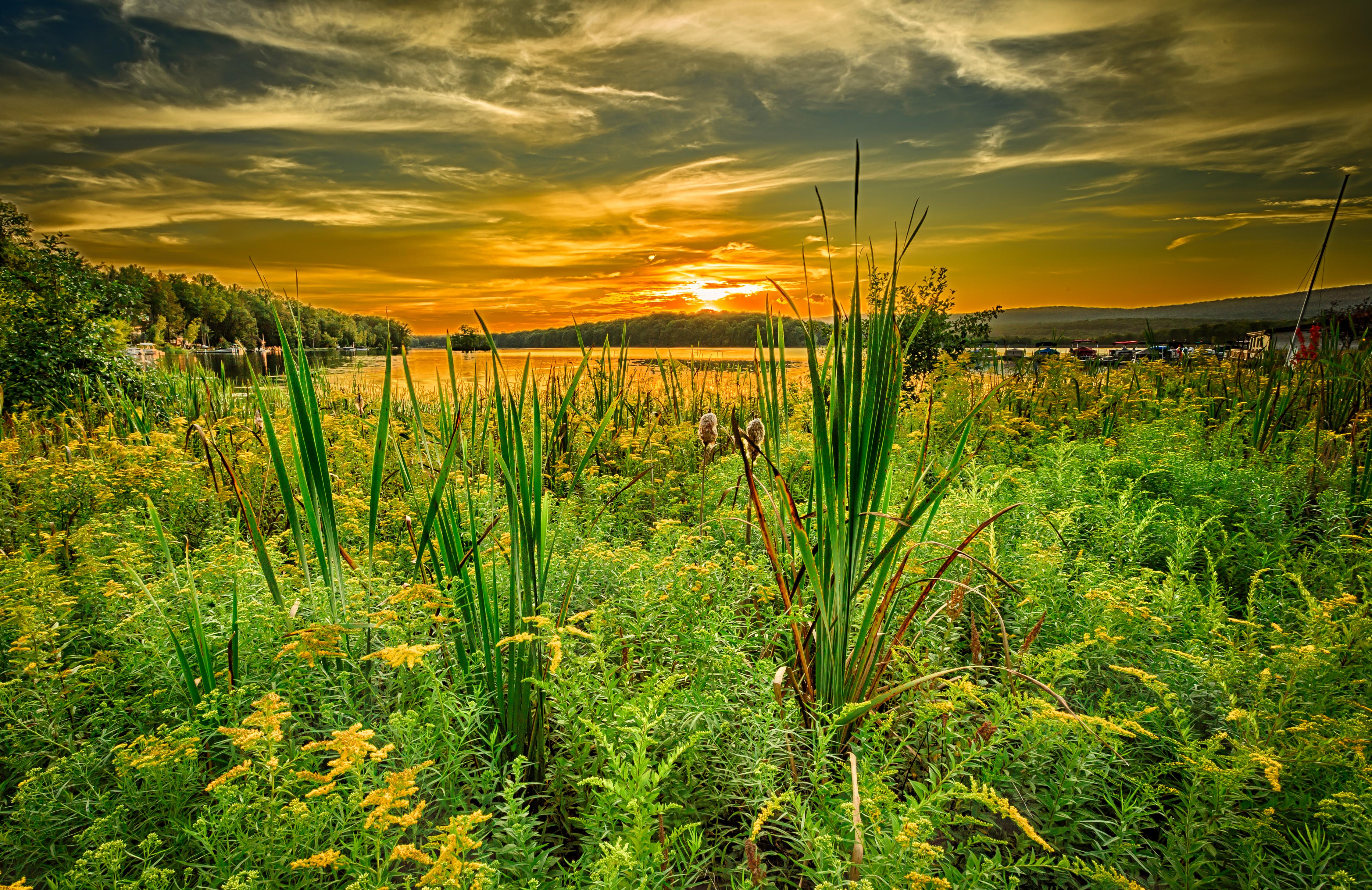 закат озеро небо трава  № 3878857 загрузить