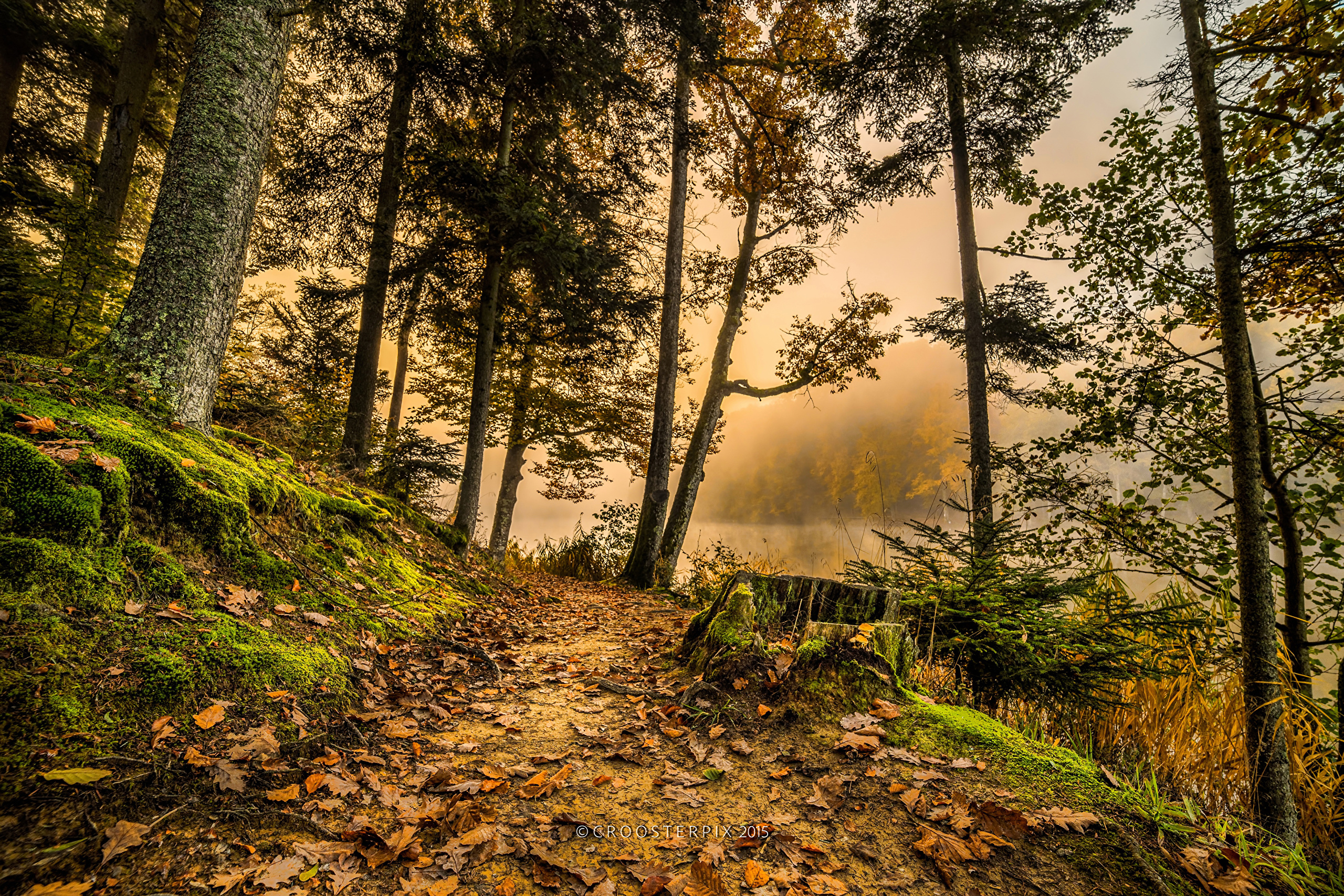 природа HDR река деревья  № 257388  скачать