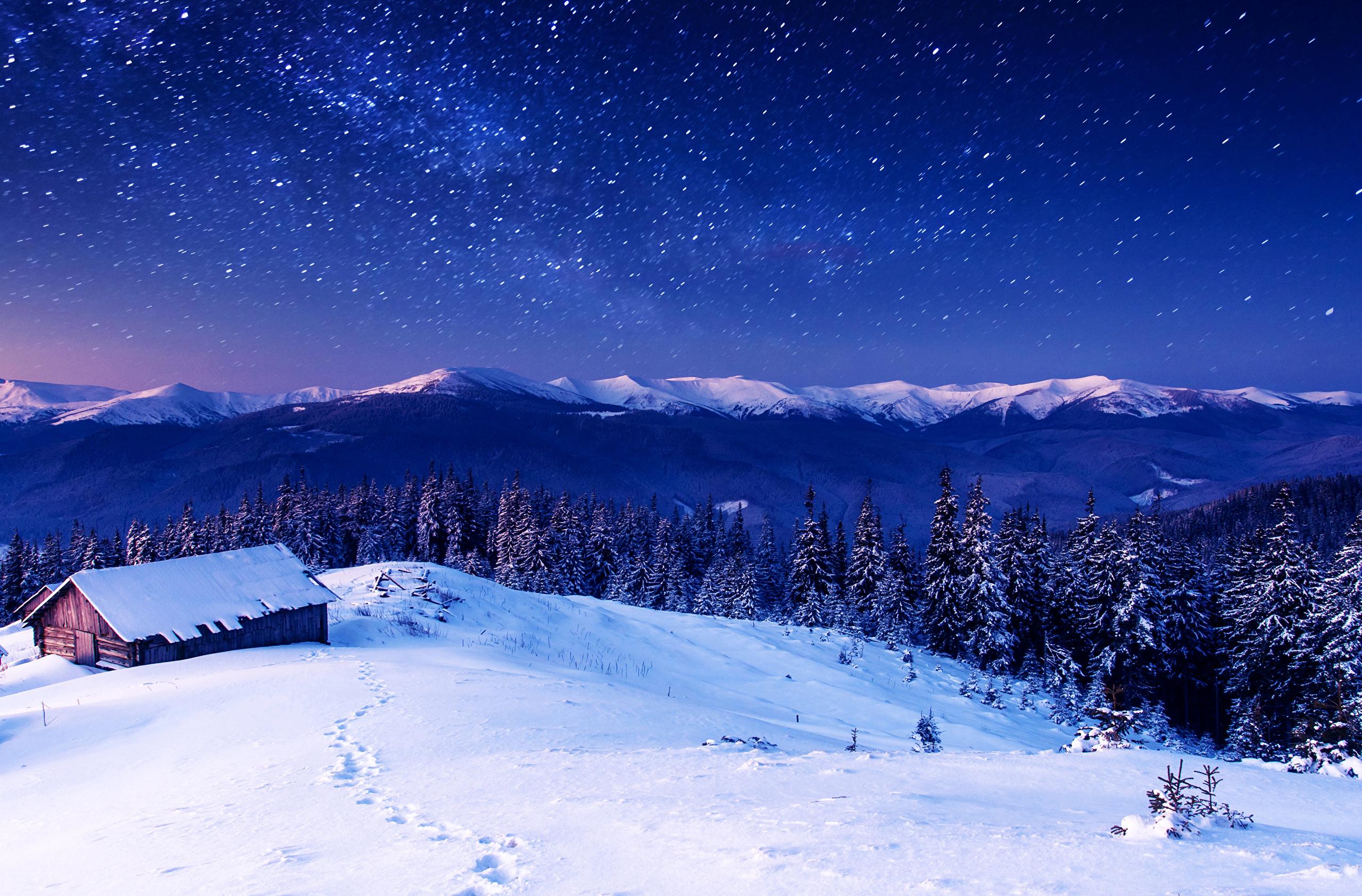 Snowy  Definition of Snowy by MerriamWebster