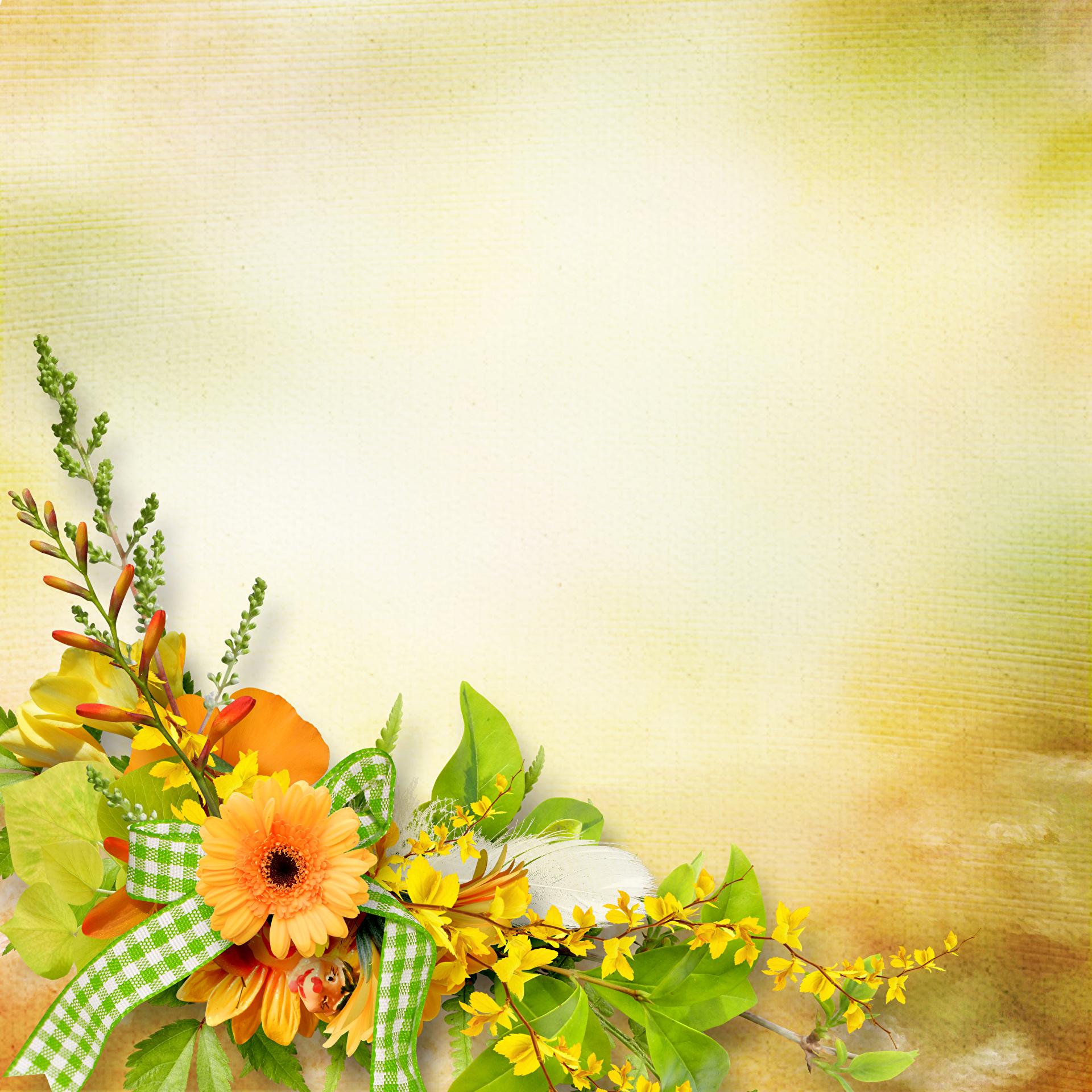 Цветы для поздравительных открыток с 289