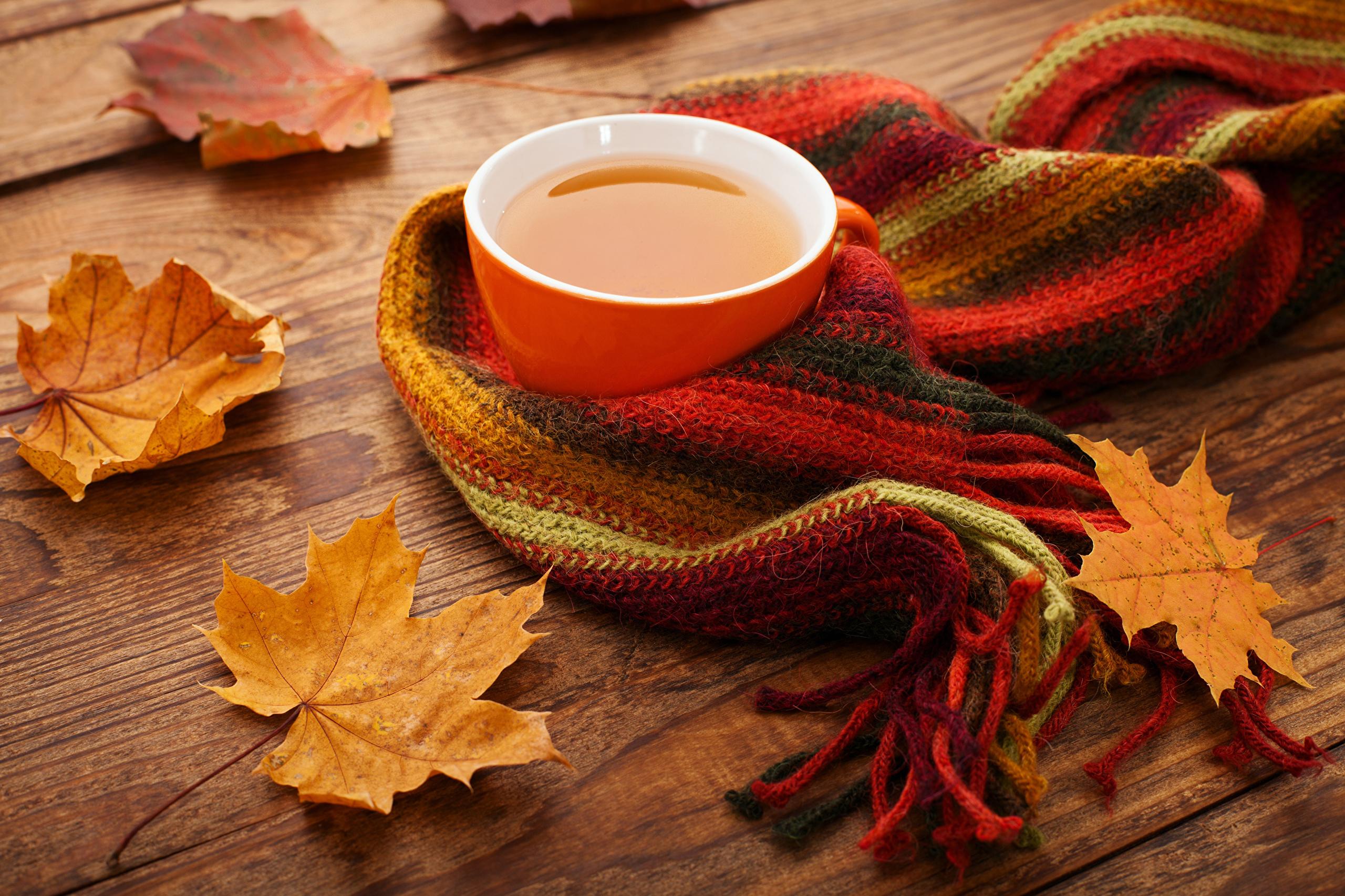 обои на рабочий стол тепло уют горячий чай № 246962 загрузить
