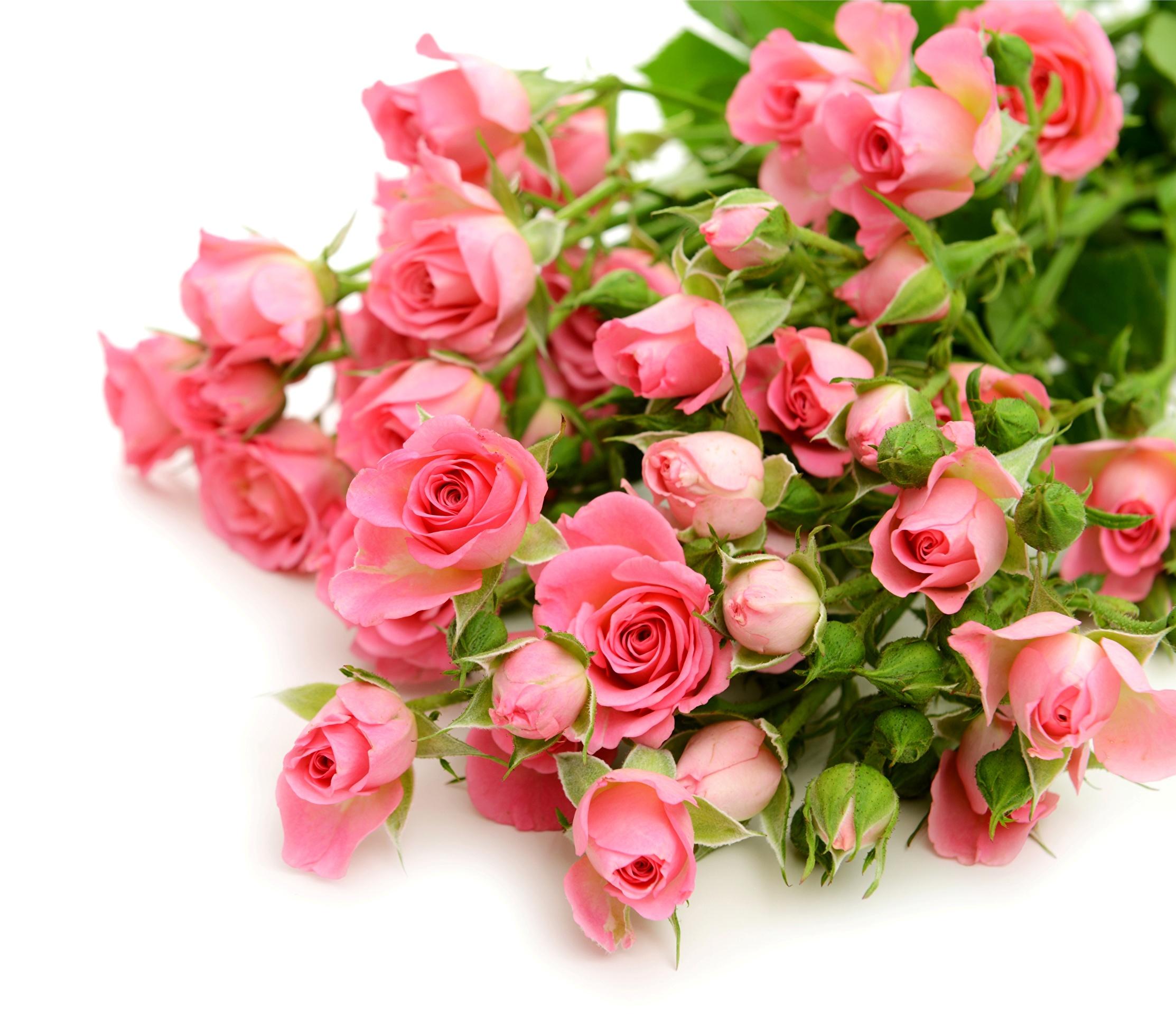Букеты роз для поздравления картинки 327