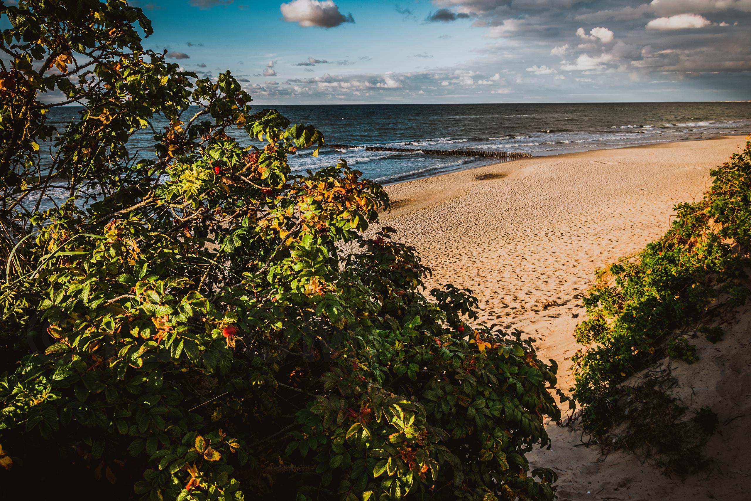 Фото на пляжах россии 10 фотография