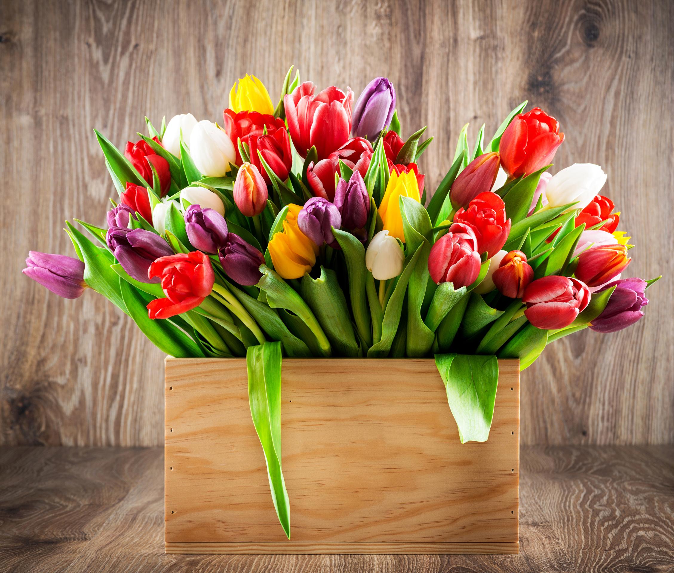 тюльпаны ваза море  № 1012880  скачать
