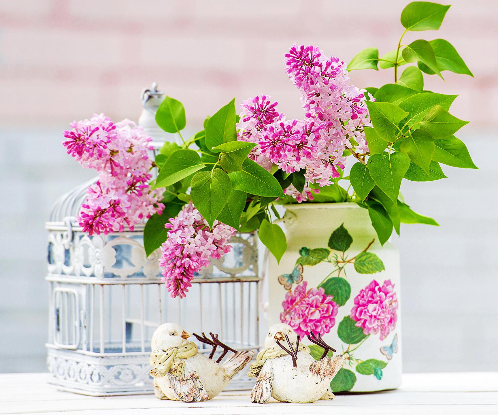 природа цветы ваза сирень  № 3063847 без смс