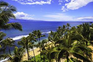 Обои Гавайи Природа