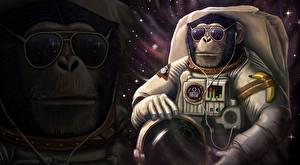 Обои Обезьяны Космонавты Очки Шлем Фэнтези Животные Космос Юмор