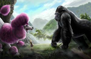 Обои Собаки Обезьяны Рисованные Пудель Животные