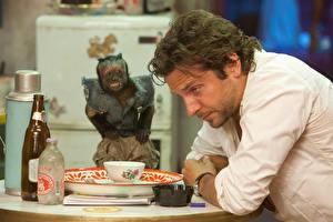 Обои Bradley Cooper Обезьяны Мужчины Бутылка Тарелка The Hangover, Phil, Drug Dealing Monkey Фильмы Знаменитости