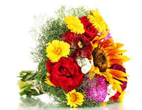 Обои Букеты Розы Георгины Подсолнухи Цветы фото