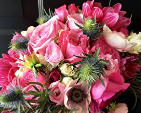 Обои Букеты Розы Анемоны Лютик Розовый Цветы картинки