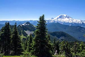 Обои США Пейзаж Парки Горы Леса Небо Ель Деревья Alaska State Park Природа картинки
