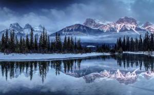 Обои Времена года Зима Горы Пейзаж Озеро Ель Снег Природа картинки