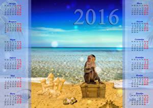 Обои Обезьяны Море Календарь 2016 Животные фото
