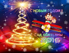 Обои Новый год Обезьяны 2016 Животные фото