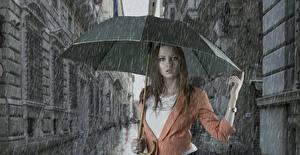 Обои Дождь Природа