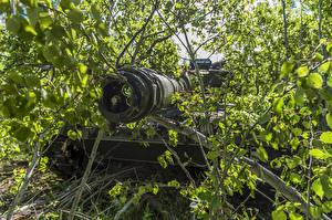 Обои Танки Ветки Листья Leopard 2A6 Армия фото