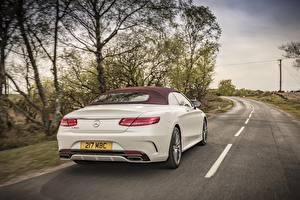 Обои Дороги Mercedes-Benz Сзади Белый Кабриолет S 500 Cabriolet AMG Автомобили картинки