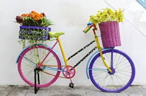 Обои Велосипед Цветы картинки