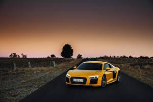 Обои Audi Желтый Металлик 2016 R8 V10 Plus Автомобили картинки