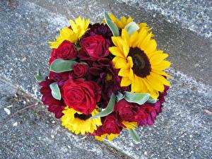 Обои Букеты Розы Подсолнухи Цветы фото
